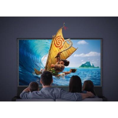 "ALR экран для проектора VividStorm S PRO 100"""